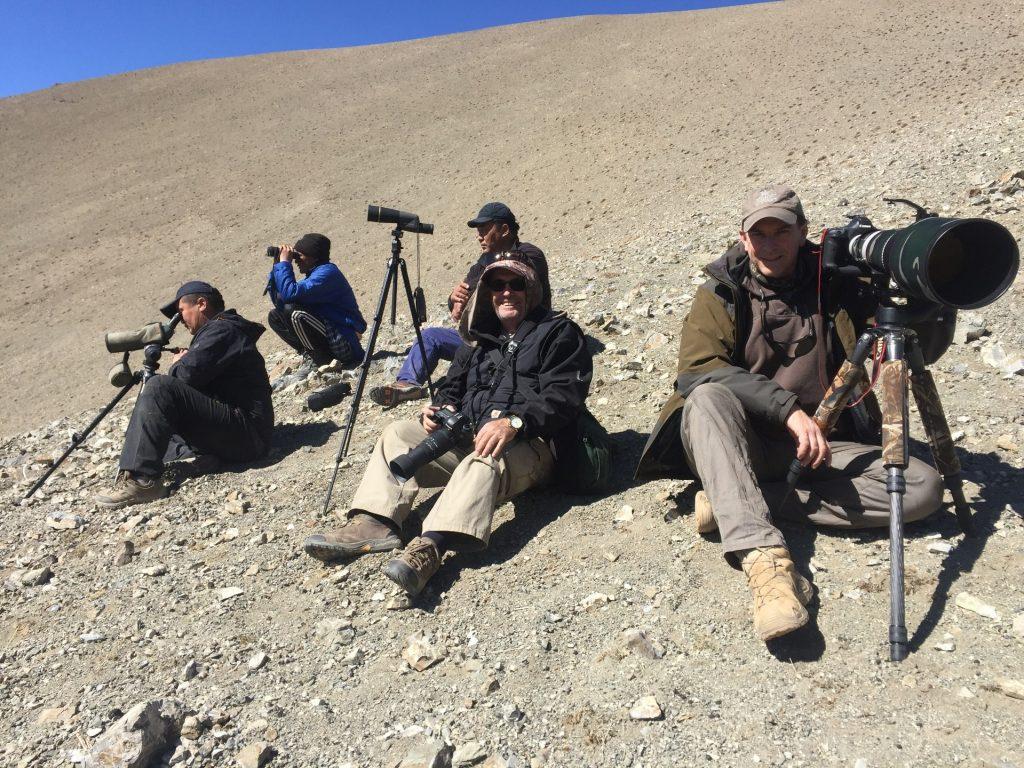 exclusive snow leopard trip mongolia