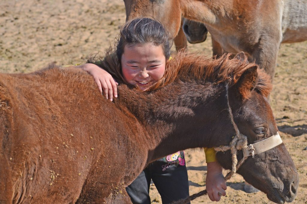 Cute mongolian child with horse