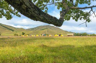 Wilderness Mongolia summer