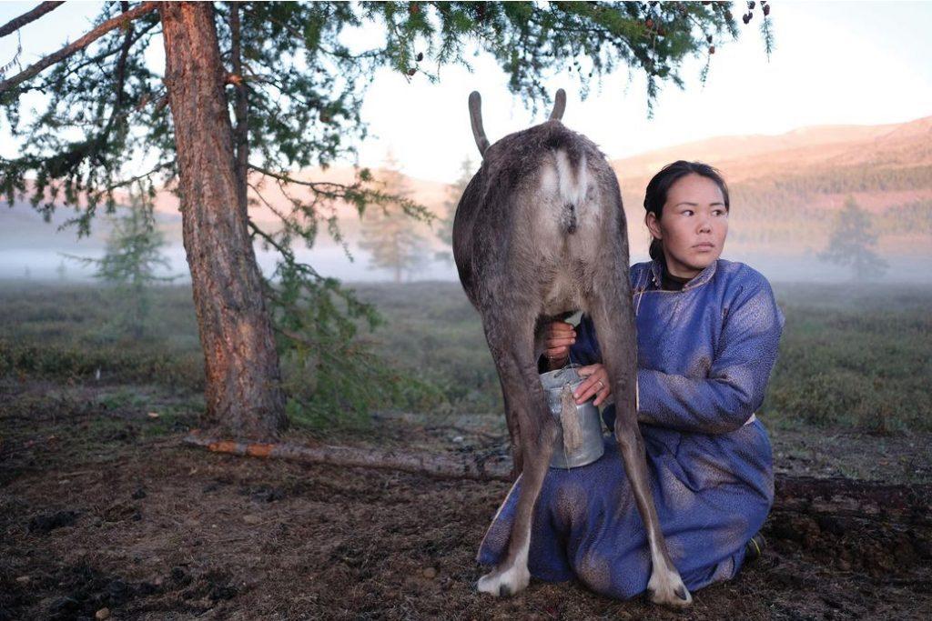 Mongolian nomadic woman photography