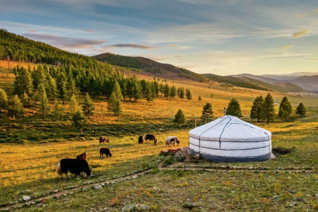mongolian landscape ger photography